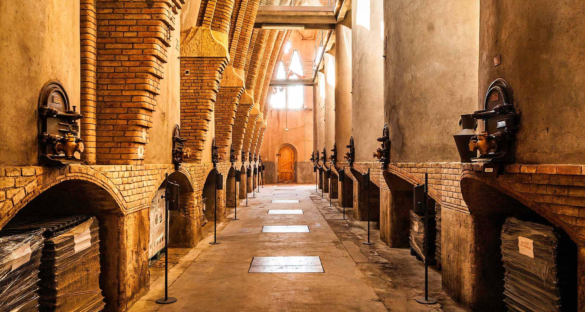 catedral-del-vi-pasadis-tinells-emagatzematge-vi